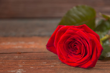 Red rose flower on a old wooden table