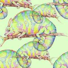 Chameleon, illustration,  seamless pattern