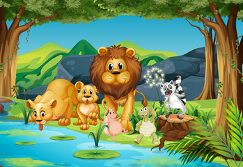 Wild animals living by the river