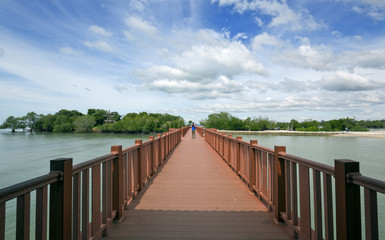 A walkaway to mangrove park. Beautiful day with clouds and blue sky.