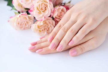 Aluminium Prints Manicure Hands of a woman with pink manicure on nails and roses against white background