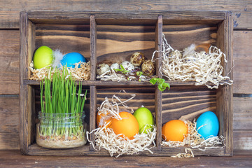 Happy easter holiday concept. Colorful chicken eggs, quail eggs, germinated wheat in glass jar, branch of trees with buds in wooden box.