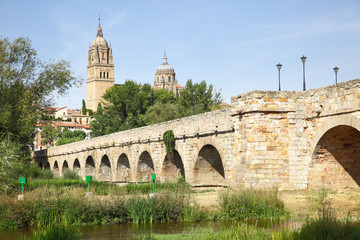 Wall Mural - Roman bridge in Salamanca