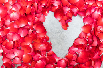 Heart shape of red petals on white background