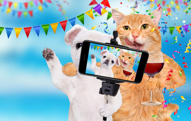 Cat and dog are celebrating with wine glass.  Cat and dog taking a selfie together with a smartphone.