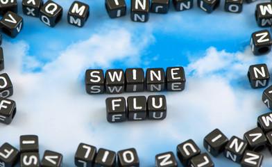 The word Swine flu on the sky background