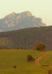 View of a Slovakian landscape with mountain of Rozsutec on backg