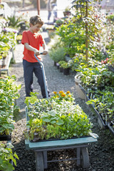 Boy pulling garden cart filled with plants