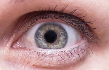 глаз человека крупным планом смотрит прямо