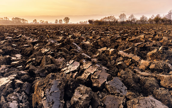 plowed soil. spring field. sunset over ploughed field. Countrysi