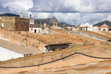 Dachansichten