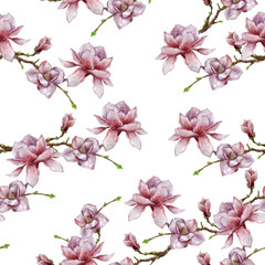 Watercolor illustration with magnolia branch isolated on white background. Spring background. Wedding card. Beautiful seamless pattern with blooming flowers