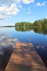Typical Finnish nature fir woods near lake