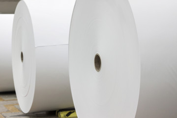 Giant paper rolls
