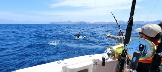Ingelijste posters Vissen Big game fishing. Caught a marlin jumping near the boat.