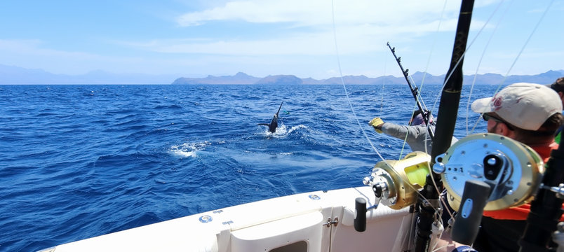 Big game fishing. Caught a marlin jumping near the boat.