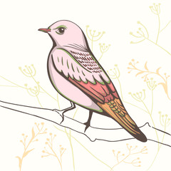 illustration of a bird. hand made background