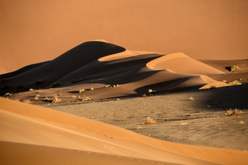 Sand dune abstract in Namibia.
