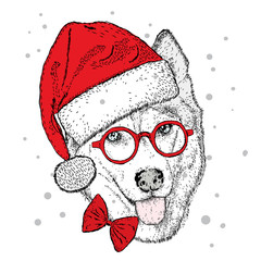 Dog in Christmas hat and sunglasses. Vector illustration. Cute Husky.