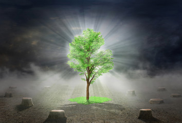 Eco concept. The Tree of Life, surrounded by darkness, emits lig