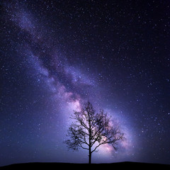 Tree against Milky Way. Night landscape. Night colorful scenery. Starry sky in summer. Beautiful universe. Space background with galaxy and old tree. Purple milky way. Travel