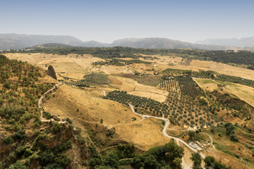 View from Ronda (Andalucia, Spain)