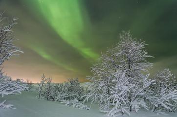 Winter,snow,Aurora,Northern lights,night,stars.