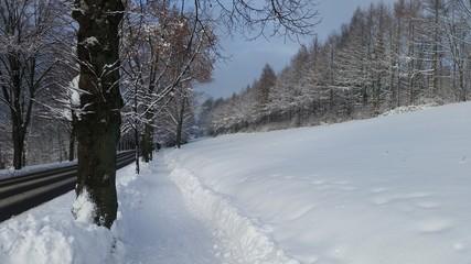 Schneelandschaft mit Straße und Fußweg - Winterdienst