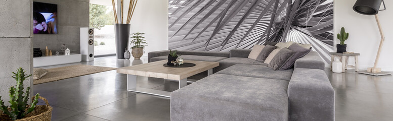 Grey living room with picture