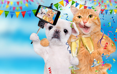 Cat and dog are celebrating with champagne glasses.  Cat and dog taking a selfie together with a smartphone.