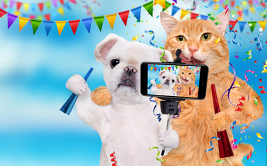 Cat and dog are celebrating.  Cat and dog taking a selfie together with a smartphone.