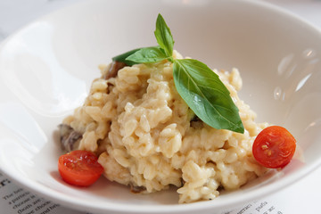 Creamy risotto in porcelain plate