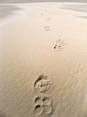 Tracks of running shoes in the sand