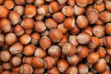 Hazelnut. Healthy diet. A lot of. View from above.