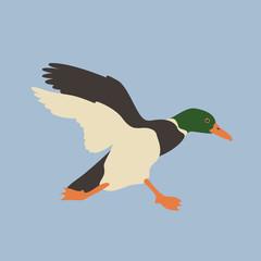 duck head vector illustration style Flat