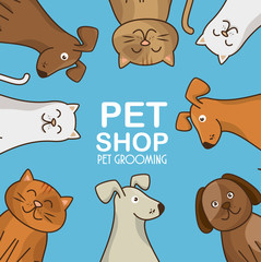 group animals pet shop vector illustration design