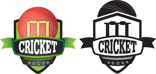 cricket logo or badge, shield or branding