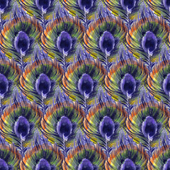 Watercolor seamless pattern with peacock feathers. Cute hand drawn illustration