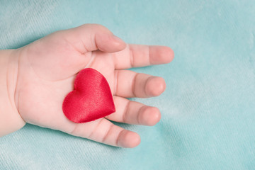 Red heart in the hand of a baby on a blue background