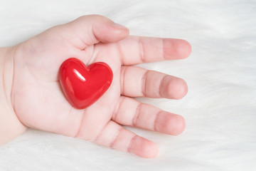Red heart in the hand of a baby on white fur background