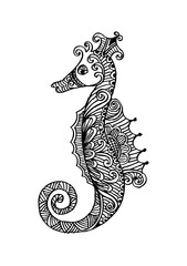 Decorative outline seahorse illustration