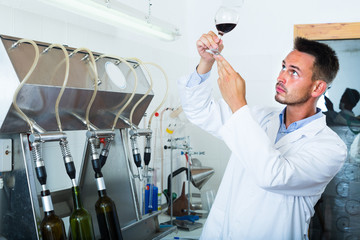 worker holding glass of wine