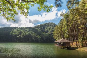 Pang Ung forestry plantations, Mae hong son province, Thailand.