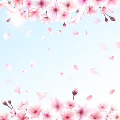 Blooming cherry. Spring background. Falling sakura pink petals. EPS 10 vector