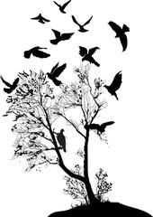 doves near bare tree isolated on white