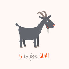 G is for Goat. Vector clipart eps 10 hand drawn illustration isolated on white.