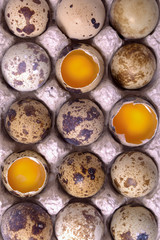 Raw quail eggs on the paper container with three open eggs