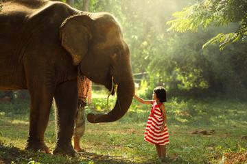 Elephant with me