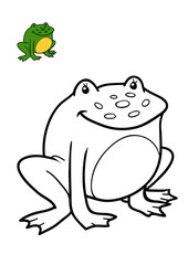 Coloring book, Frog