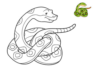 Coloring book, Snake